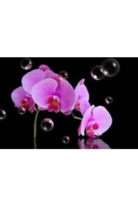 Tranh gạch 3D hoa H100