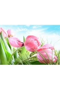 Tranh gạch 3D hoa H105