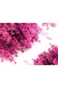 Tranh gạch 3D hoa H107