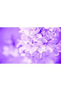 Tranh gạch 3D hoa H118