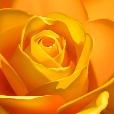 Tranh gạch 3D hoa H53