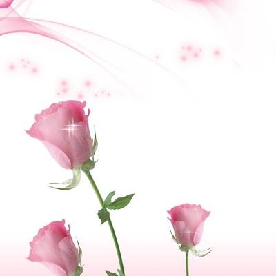 Tranh gạch 3D hoa H70