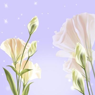 Tranh gạch 3D hoa H71