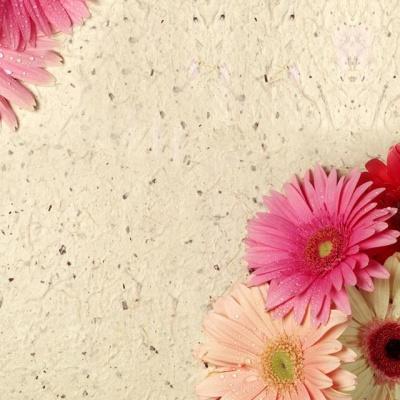 Tranh gạch 3D hoa H72